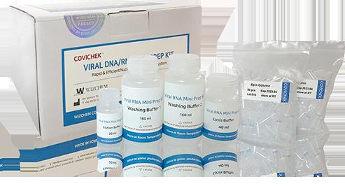 VIRAL DNA